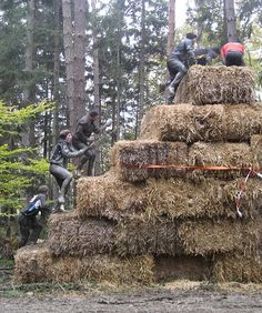Military-Style Obstacle Course Races - (ToughMudders, Rebel Race, Zombie Run, etc.) Huh??? I don't know if I can do that?