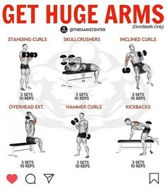 Arm Workout Men, Bicep And Tricep Workout, Dumbbell Workout, Strength Workout, Best Workout Plan, Gym Workout Tips, Fun Workouts, Workout Motivation, Workout Diet