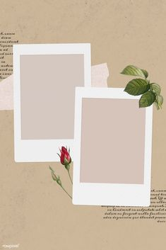 Blank collage photo frame template on beige background vecto