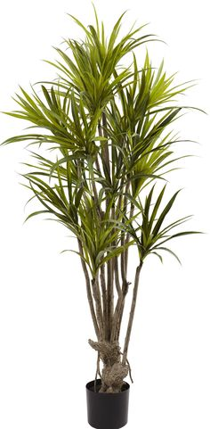 Features:  -393 Leaves.  -Exotic look and feel.  -Perfect for both home and office decorating.  -Makes a memorable gift.  -Product may need to be re-shaped when removed from box.  -Wipe clean with a s