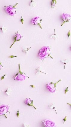 Check out the post right here for cool wallpaper inspiration. These interesting background images will bring you joy. Floral Wallpaper Desktop, Vintage Wallpaper, Flowery Wallpaper, Chic Wallpaper, Flower Background Wallpaper, Flower Phone Wallpaper, Rose Wallpaper, Cute Wallpaper Backgrounds, Cellphone Wallpaper