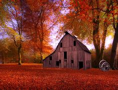fall barn... gorgeous color