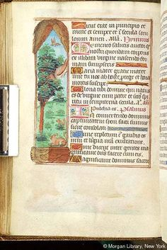 Book of Hours, MS M.276 fol. 40v - Images from Medieval and Renaissance Manuscripts - The Morgan Library & Museum