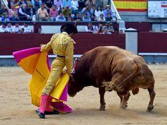 TORERIAS DE CHELIN: OREJA PARA JUAN DEL ALAMO  EN LA IMNAGURACION DE L...