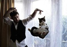 cat with psychic man