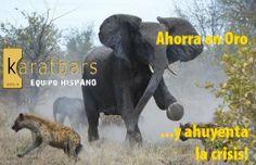 Haz frente a la crisis. http://k-equipo-hispano.com.es/go/inversionsegura/3000euros