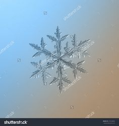 Snowflake On Smooth Blue-Brown Gradient Background. This Is Macro Photo Of Real Snow Crystal: Large And Symmetrical Stellar Dendrite With Side Branches And Complex Structure. - 473548804 : Shutterstock