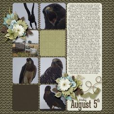 I used the Scraps N Pieces store collab kit Ol Man River found here:  http://www.scraps-n-pieces.com/store/index.php?main_page=index&cPath=89&zenid=0c4c0507051c94ac3c8d6942dac4ad72