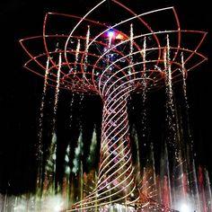 #expo2015 #alberodellavitaexpomilano2015 #treeoflifeexpo2015 #milan #milano #milanocity #milanodavedere #milano_go #italia #italy #beautiful #picoftheday #instadaily #bestoftheday #autumn #photooftheday #followme #follow4follow #follow #tbt #swag #igerslo by vaydaa_krishnan