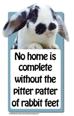 Great house signs for rabbit lovers We have put together a collection of what we would like to see in the world of house signs for us bunny lovers. There are plenty available for dog & cat lovers, so how about some that refer to rabbits too!
