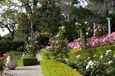 Garden scene at Villa Ephrussi de Rothschild - St Jean Cap Ferrat, France