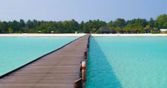 #wanderlust #travel #diving #adventures #chilling #beach #Indianocean #maldivians #maldives #paradise #isles #dream  follow us : https://twitter.com/dogbagNgo