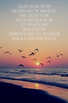 """Xavier Rudd """"Tomorrow is a new day for everyone Brand New Moon Brand New Sun"""" Breathe In The Air, Xavier Rudd, Tomorrow Is A New Day, Most Beautiful Birds, New Moon, Trevor Hall, Music Lyrics, Twitter, Nature"""
