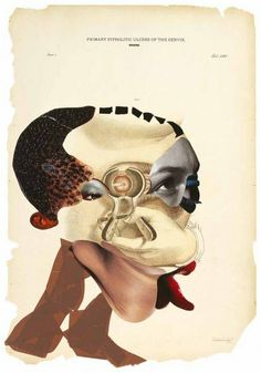 Les collages de Wangechi Mutu ! » Wangechi Mutu