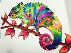 Chameleon! Magical Jungle! Coloring books! Johanna Basford! Neon colors!