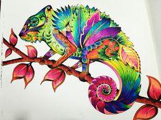 Chameleon! Magical Jungle! Coloring books! Johanna Basford! Neon colors!