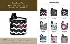 Oh-Snap Bin!  It's New in the Fall Catalog starting September 1st 2014.