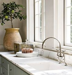 Faucet, sink, windows, potted tree