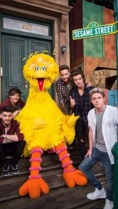 One Direction film upcoming episode of Sesame Street - The boys with Big Bird at Sesame Street - Four One Direction, One Direction Posters, One Direction Videos, One Direction Humor, One Direction Pictures, One Direction Collage, Direction Quotes, One Direction Lockscreen, One Direction Wallpaper