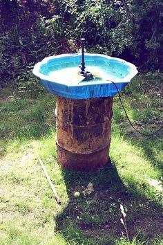 Pool of Venus