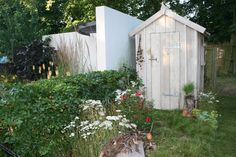 Handmade shed by Pure Folly in the Garden on my Hedgehog Street garden at Hampton Court 2014