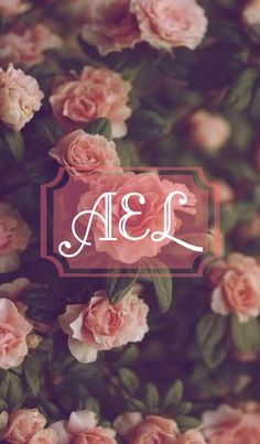 Beautiful rose monogram wallpaper by Andrea Eads.  Made with @monogramapp