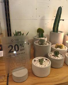 오브젝트 홍대점에서 lab.crete의 화분들이 20% 크리스마스 세일을 진행합니다. 연말연시 소중한 분들께 반려식물을 선물해 보세요 #labcrete #concrete #cactus #pot #christmas #sale #랩크리트 #콘크리트 #선인장 #화분 #크리스마스 #선물 #세일 #홍대 #오브젝트 @insideobject by lab.crete