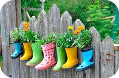 Using odd gum boots as planters. Clever!