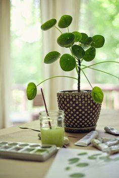 172 meilleures images du tableau jardin plantes. Black Bedroom Furniture Sets. Home Design Ideas
