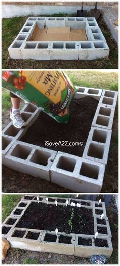 Small garden idea 3 cinderblocks with tall thin hedge