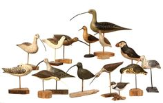 COLLECTION SHORE BIRD DECOYS - All late 20th c., in carved and painted wood, on driftwood or natural bases, some signed.