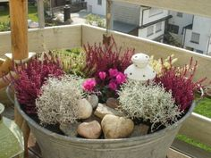 Risultati immagini per miniteiche garten zinkwanne Winter Planter, Fall Planters, Garden Planters, Balcony Plants, Balcony Garden, Garden Care, Container Gardening, Gardening Tips, Small Space Interior Design