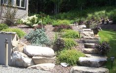 Slope planting with stone steps
