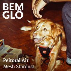 O Air Mesh proporciona um conforto adicional já que ele utiliza sistema de refrigeração no peito pelos poros de tecido.   Demais né? Seu pet muito mais lindo e estiloso ;) #bemglo #pet #zeedog