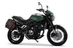 Gleich drei neue von Moto Morini: Hier die Scrambler.