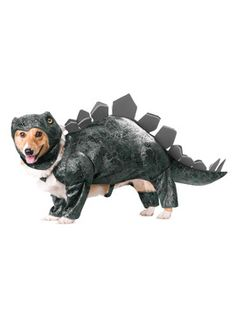 Stegosaurus Dog Costume / California Costumes