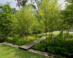 Creative DIY Rain Garden Steps And Plants Ideas - Onechitecture Landscape Plans, Landscape Architecture, Landscape Design, Architecture Design, Design Architect, Rain Garden Design, Garden Steps, Garden Paths, Woodland Garden