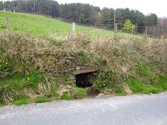 Jinny Well, Newchurch-In-Pendle
