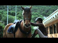 Record Mundial de Salto Alto a Caballo sin Silla - YouTube