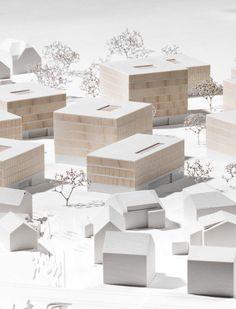 Seedomaine_Lochau-Innauer_Matt_&_Gohm_Hiessberger_Architects