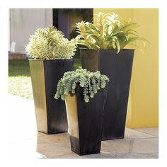 zinc tall square planters - crate and barrel
