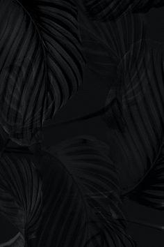 Night Sky Wallpaper, Black Phone Wallpaper, Laptop Wallpaper, Leaf Background, Background Patterns, Dark Art Photography, Black Leaves, Digital Portrait, Free Illustrations