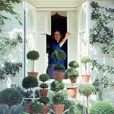 "Rachel ""Bunny"" Mellon with a gathering of her topiaries, photographed at a window of her Virginia home (Vogue, 1965). Photo: Horst P. Horst/Condé Nast Archive. AD Remembers Design Icon Bunny Mellon"