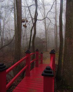 "Sam Calhoun on Instagram: ""The bridge into the heart of Monte Sano State Park's North Alabama Japanese Garden.  #montesanostatepark #visitnorthal #explore…"""
