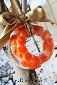 Such a fun tradition. Ice Carrot Wreath to leave out for Santa's Reindeer. Adorable, easy, fun.