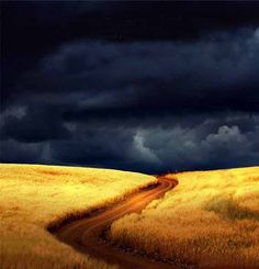 The coming storm. The coming storm. Landscape Art, Landscape Paintings, Landscape Photography, Nature Photography, All Nature, Amazing Nature, Belle Photo, Pretty Pictures, Beautiful Landscapes
