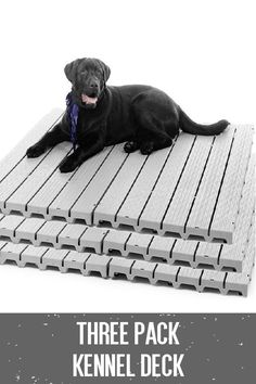 Dog Kennel Flooring For Outdoor And Indoor