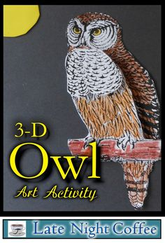 This owl 3-D art project is simple and looks great when finished! Perfect for Halloween, nature studies...or fun!