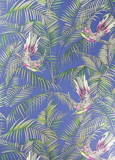 Sunbird Red and Green Wallpaper from Osborne and Little Eden Collection. A delightful wallpaper designed by Matthew Williamson featuring colourful exotic birds darting between rich foliage in fuchsia, green and metallic gilver on an electric blue backgrou Matthew Williamson, Osborne And Little Wallpaper, Green Wallpaper, Tropical Wallpaper, Bird Wallpaper, Peacock Wallpaper, Leaves Wallpaper, Wallpaper Patterns, Wallpaper Samples