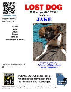 Lost Dog - Boxer - McDonough, GA, United States